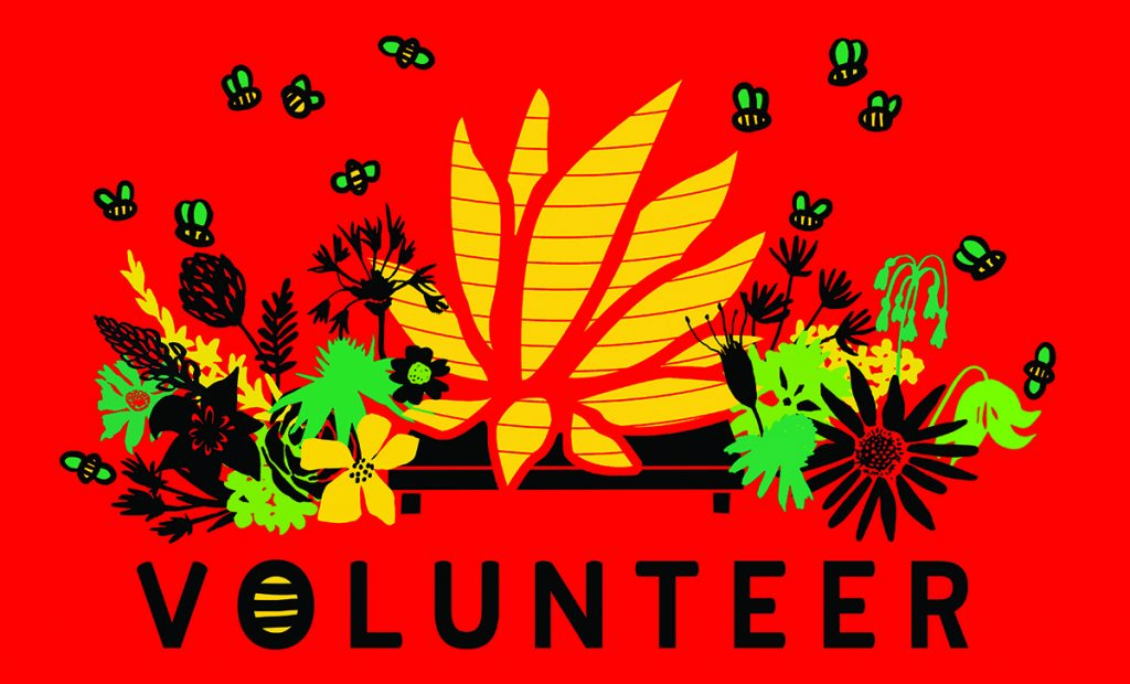 Lotus Festival Volunteer T-shirt Designs Through the Years